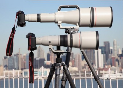 Canon EF 800mm & 1200mm